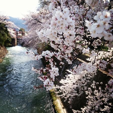 f:id:kusaboshi:20140402115152j:image:w300