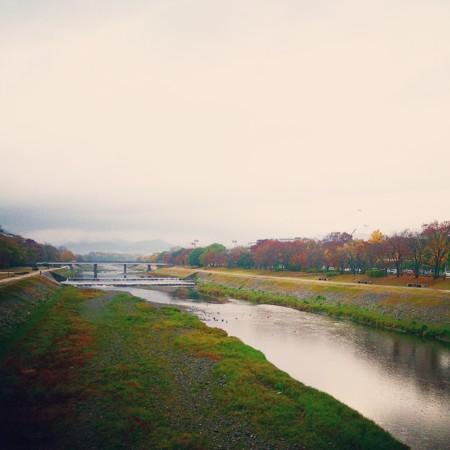 f:id:kusaboshi:20141130093512j:image:w300