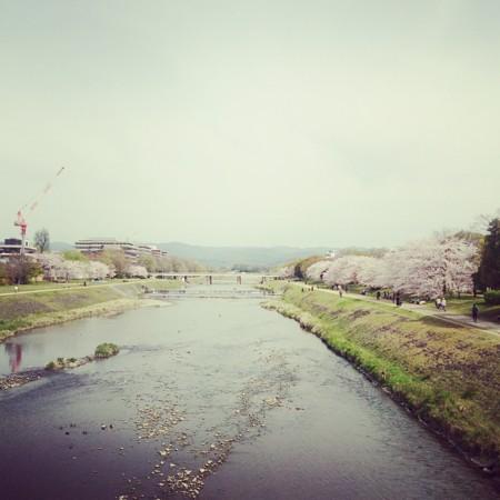 f:id:kusaboshi:20160406111122j:image:w300