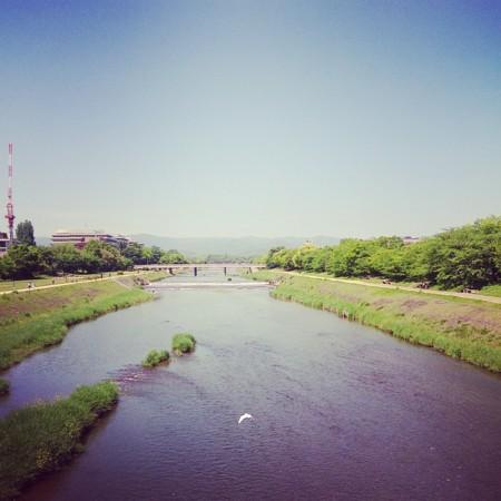 f:id:kusaboshi:20160512183116j:image:w300