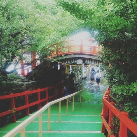 f:id:kusaboshi:20170727230304j:image:w300