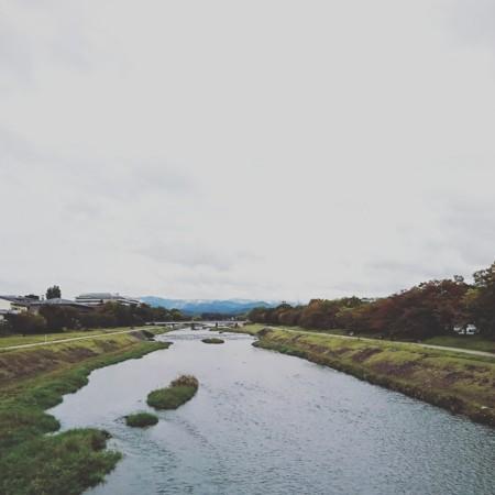 f:id:kusaboshi:20171019110936j:image:w300