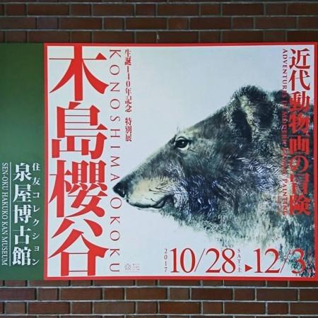 f:id:kusaboshi:20171116120903j:image:w300