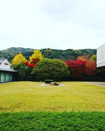 f:id:kusaboshi:20171116120933j:image:w300