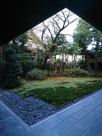 f:id:kusaboshi:20171116145007j:image:w300