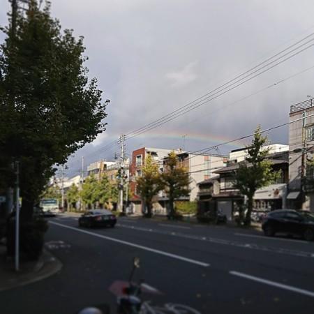 f:id:kusaboshi:20171123214259j:image:w300