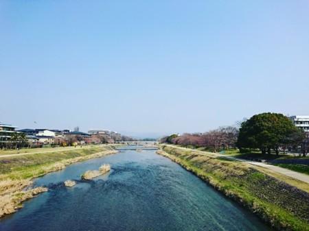 f:id:kusaboshi:20180325183130j:image:w300
