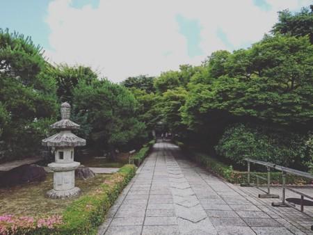f:id:kusaboshi:20180608113108j:image:w360
