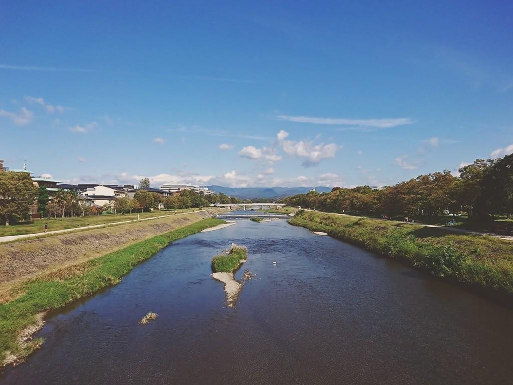 f:id:kusaboshi:20181018085549j:plain