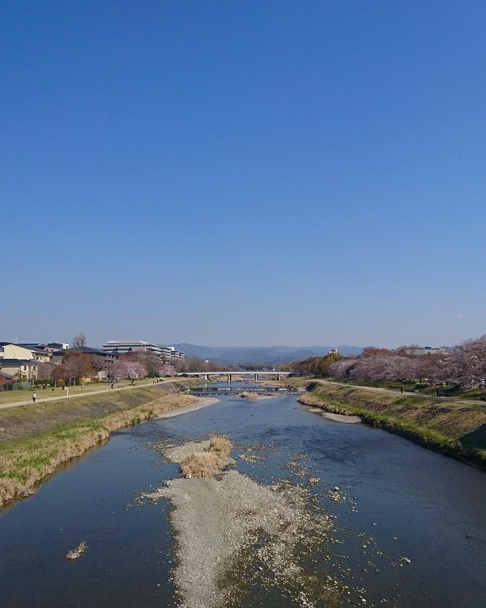 f:id:kusaboshi:20190404100649j:plain