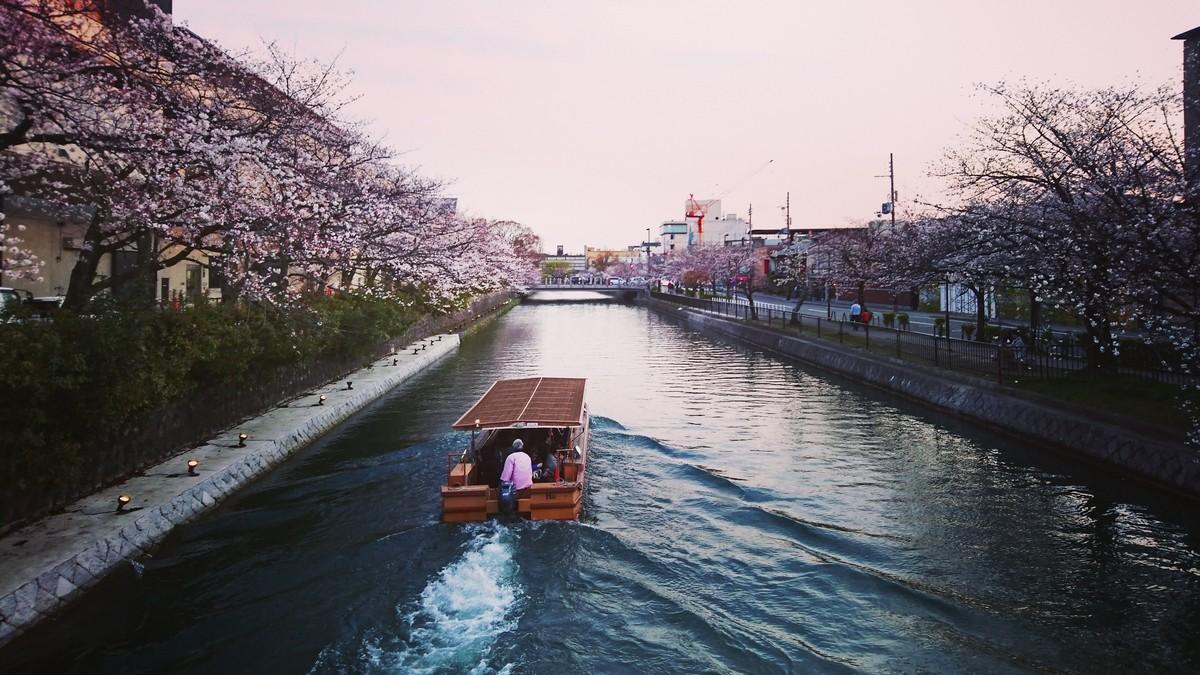 f:id:kusaboshi:20190406181257j:plain