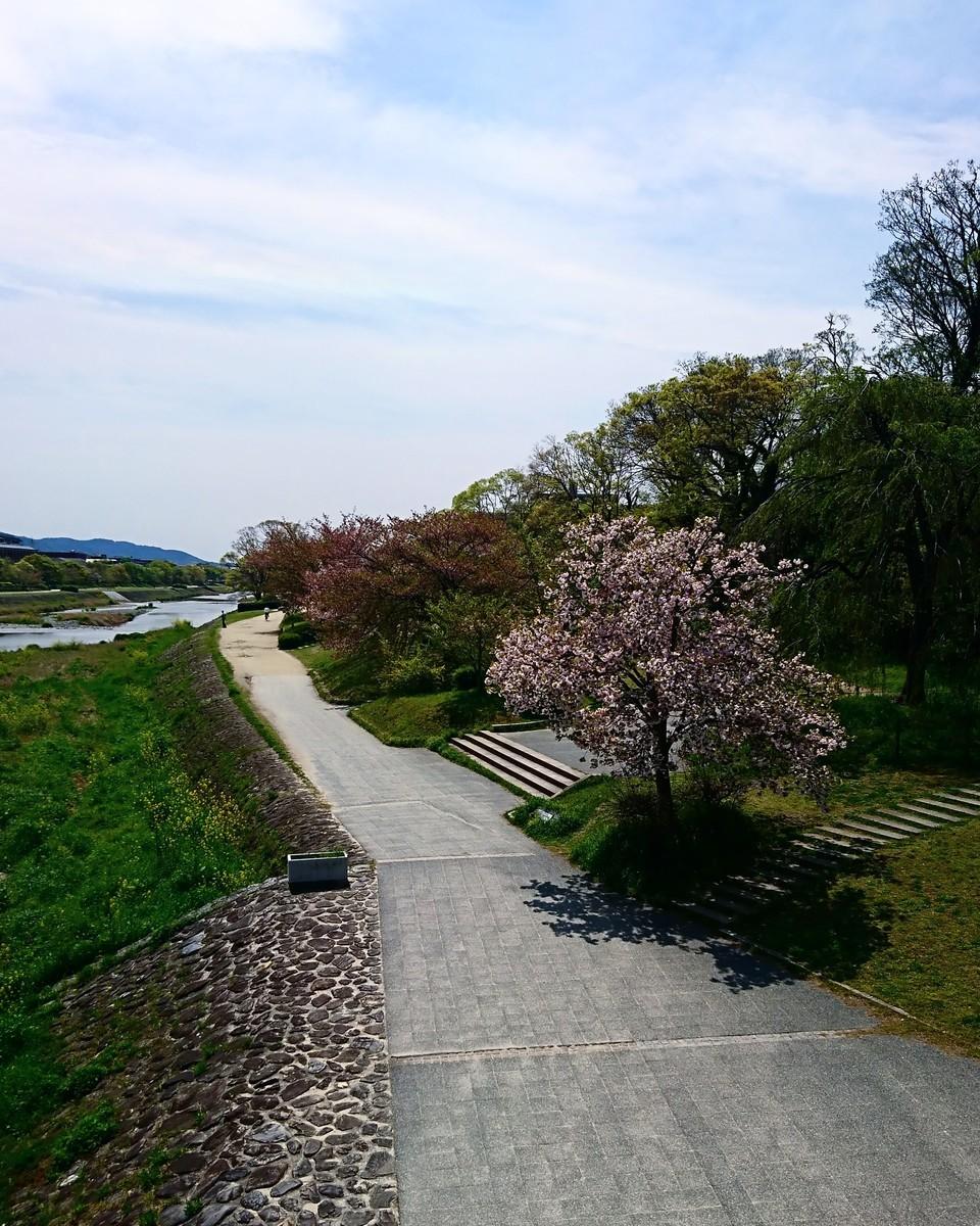 f:id:kusaboshi:20210408214535j:plain