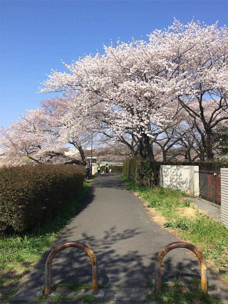 f:id:kusagami:20180326071744j:image