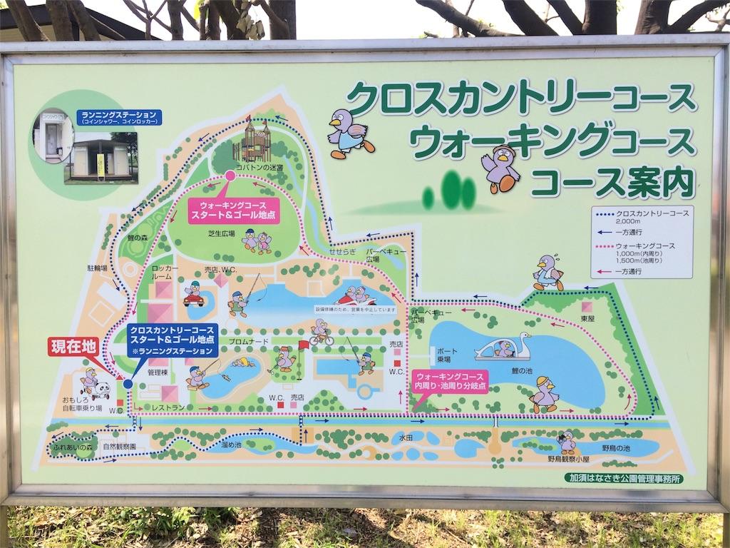f:id:kusagami:20180507124720j:image