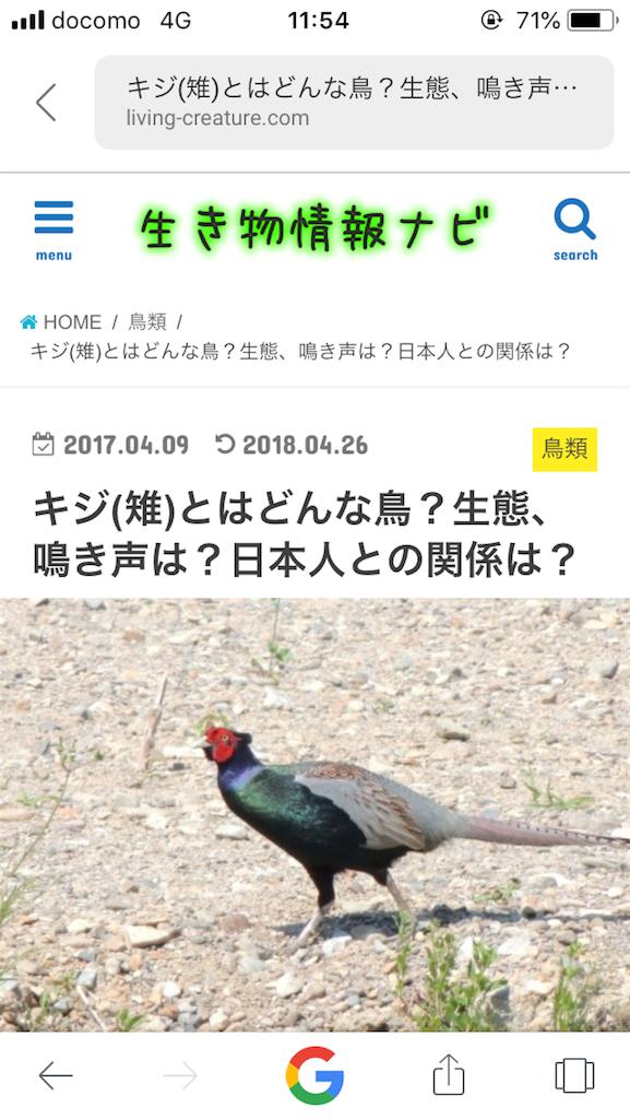 f:id:kusagami:20180514115501p:image