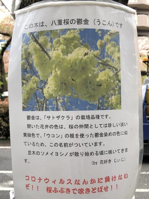 f:id:kusagasuki:20210404001501j:plain