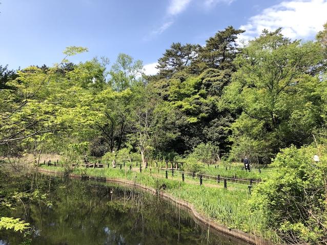 f:id:kusagasuki:20210410190515j:plain