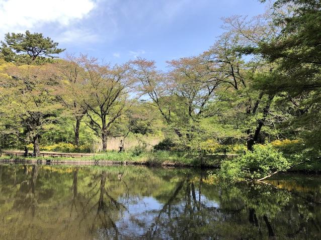 f:id:kusagasuki:20210410191220j:plain