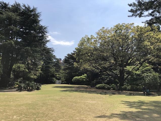 f:id:kusagasuki:20210410193553j:plain