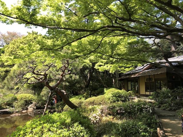 f:id:kusagasuki:20210410193605j:plain