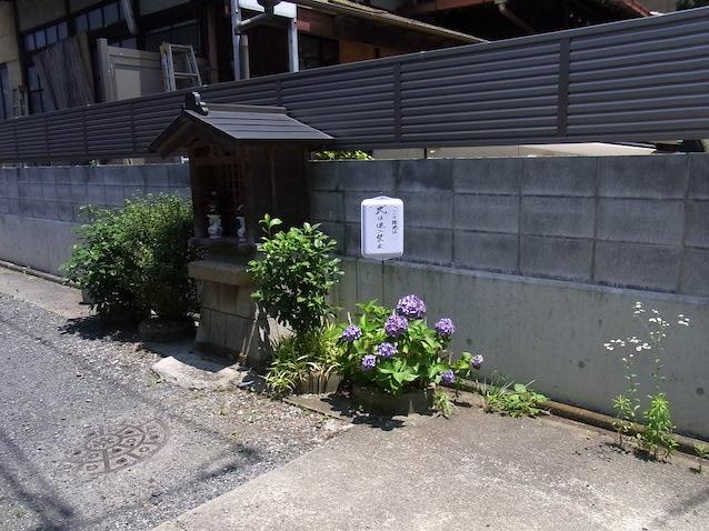 f:id:kusagasuki:20210616221745j:plain