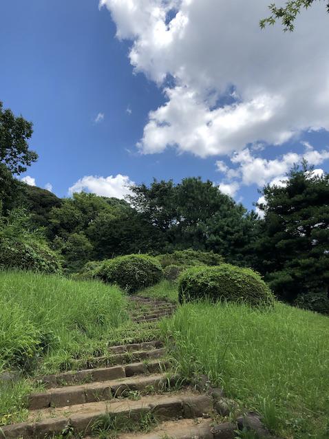 f:id:kusagasuki:20210727121506j:plain