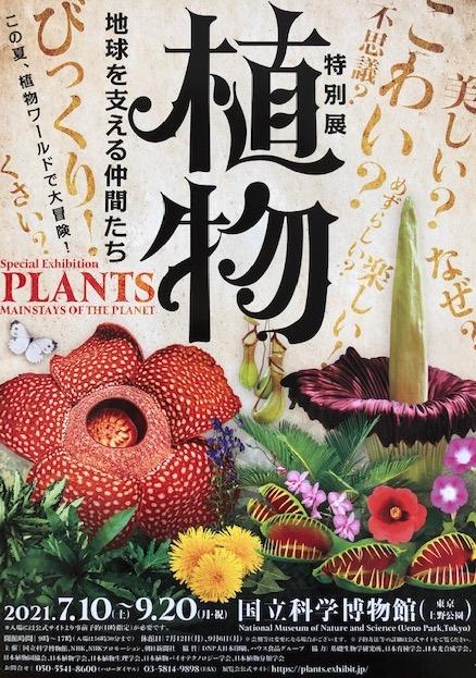 f:id:kusagasuki:20210916075108j:plain