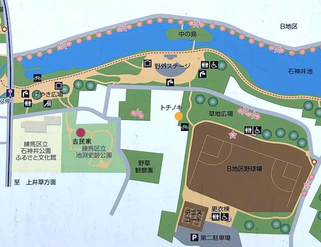 f:id:kusagasuki:20210928085241j:plain