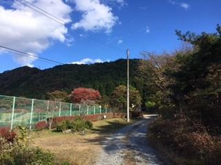 f:id:kusakimuryou:20161116145407j:plain