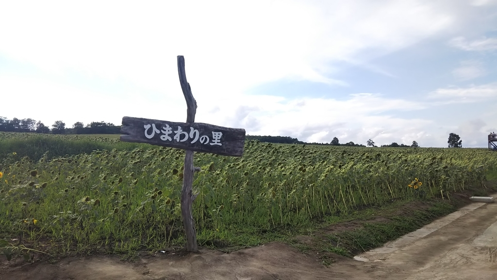 f:id:kusakyo:20180831195216j:plain