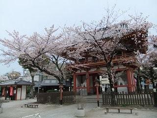 f:id:kusamachi:20100409230051j:image:left