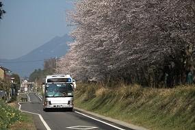 f:id:kusamachi:20120413142848j:image
