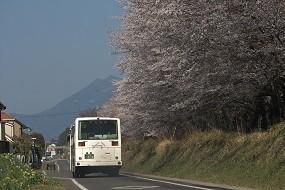 f:id:kusamachi:20120413142910j:image