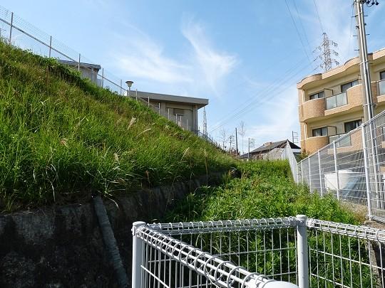 f:id:kusamachi:20121109125858j:image