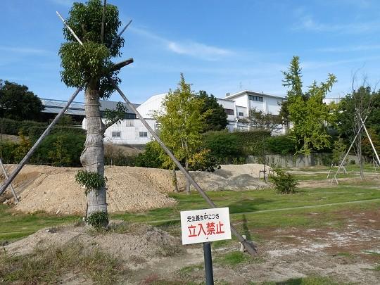 f:id:kusamachi:20121109125902j:image
