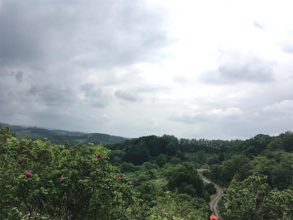 f:id:kusamaru:20190622203120j:image