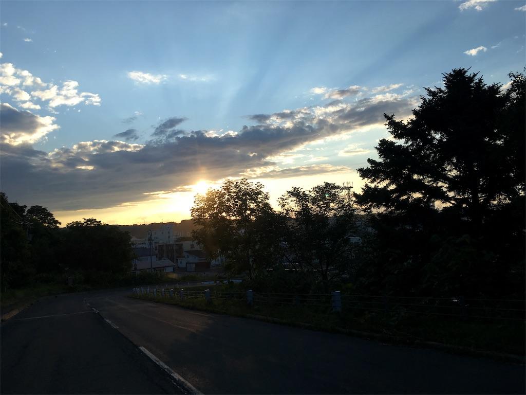 f:id:kusamaru:20190624235117j:image