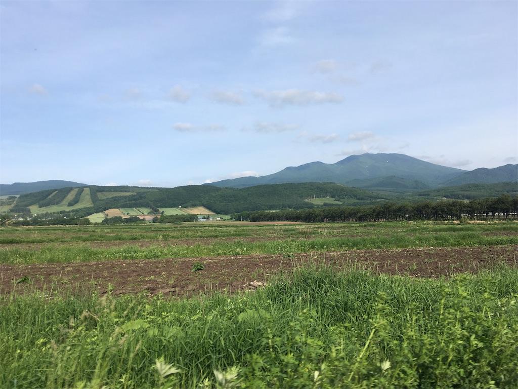 f:id:kusamaru:20190627210314j:image