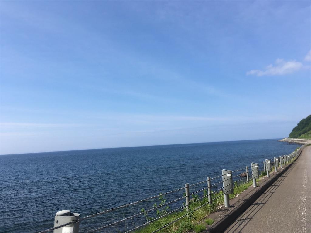 f:id:kusamaru:20190627210317j:image