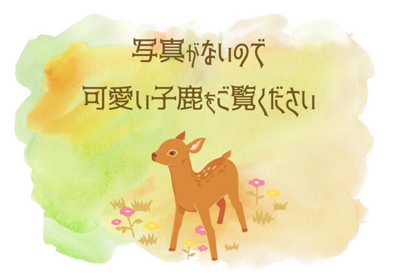 f:id:kusamochi-oisii:20180211115910p:plain