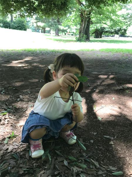 f:id:kusamochi-oisii:20180627143458j:plain