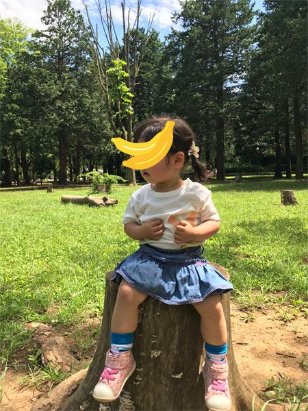 f:id:kusamochi-oisii:20180627143502j:plain