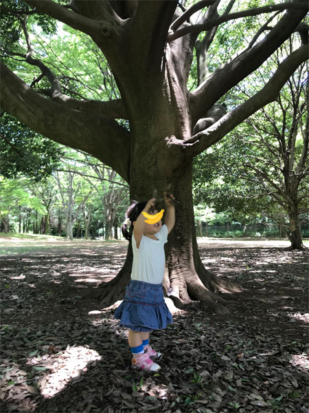 f:id:kusamochi-oisii:20180627143504j:plain