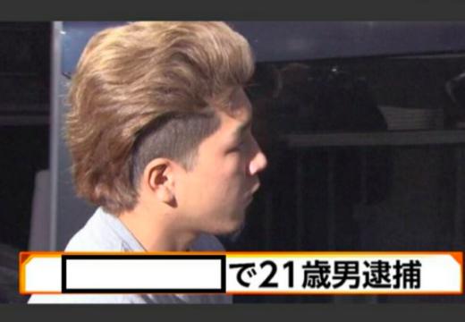 f:id:kusawake-si:20190831152737p:plain