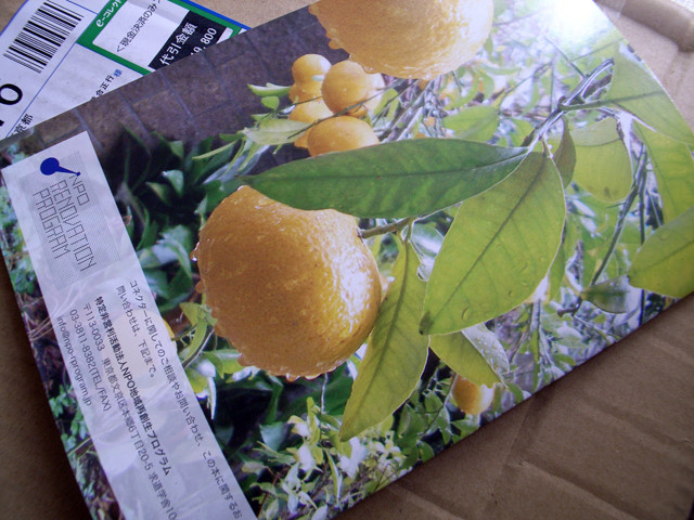 f:id:kushida-kura:20090313125524j:image