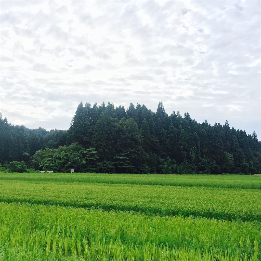 f:id:kushiyakiyaechan:20160812232823j:image