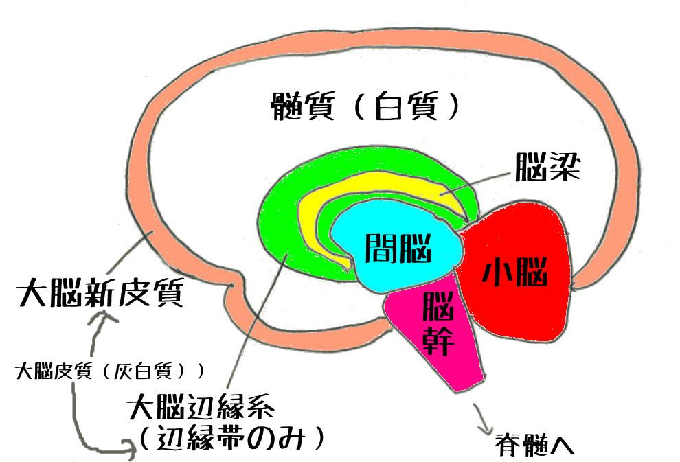 f:id:kusoimox:20200319130805j:plain