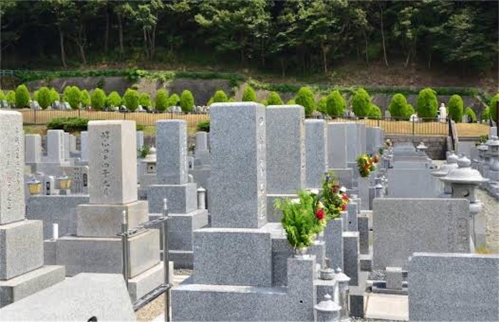 f:id:kusokusootaku:20190525124130j:image