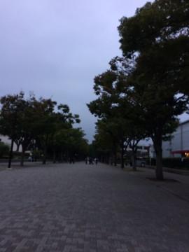 f:id:kusomamiren:20171011215737j:plain