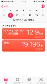 f:id:kusomamiren:20180409210506j:plain